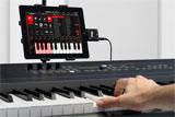 Keyboard and iPad with iKlip
