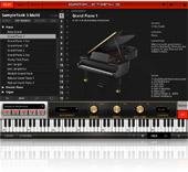 IK Multimedia | SampleTank 3 Custom Shop