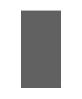 icon_smartphone