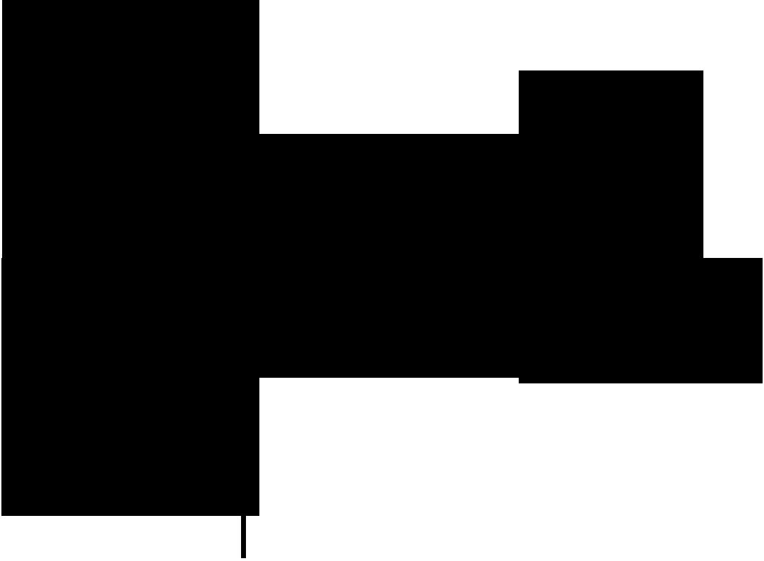 iKlip Xpand - pole